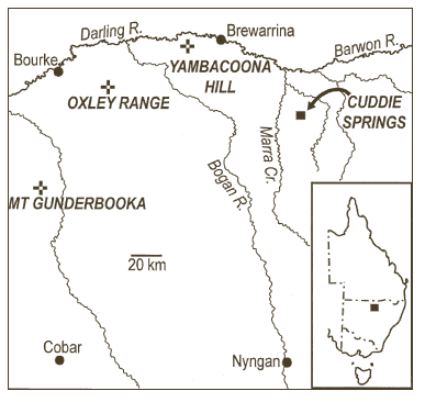 Location of Cuddie Springs, Yambacoona Hill and Mt Oxley in SA Australia (published in Australian Archaeology 56:46).